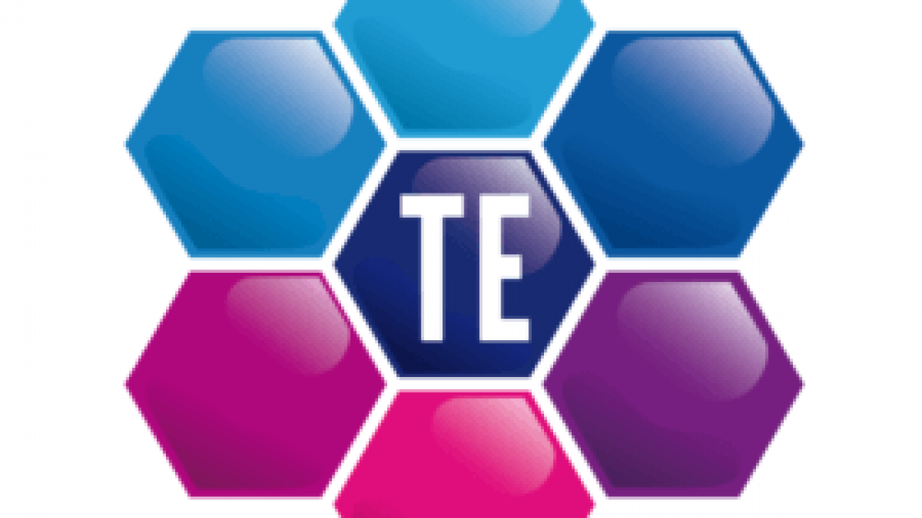 logo-TE-300x227